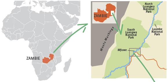 carte-afrique-Zambie.