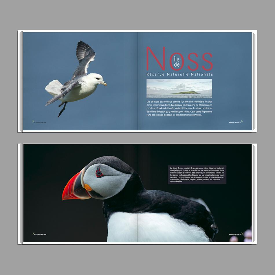 Pages-livre-shetland-web