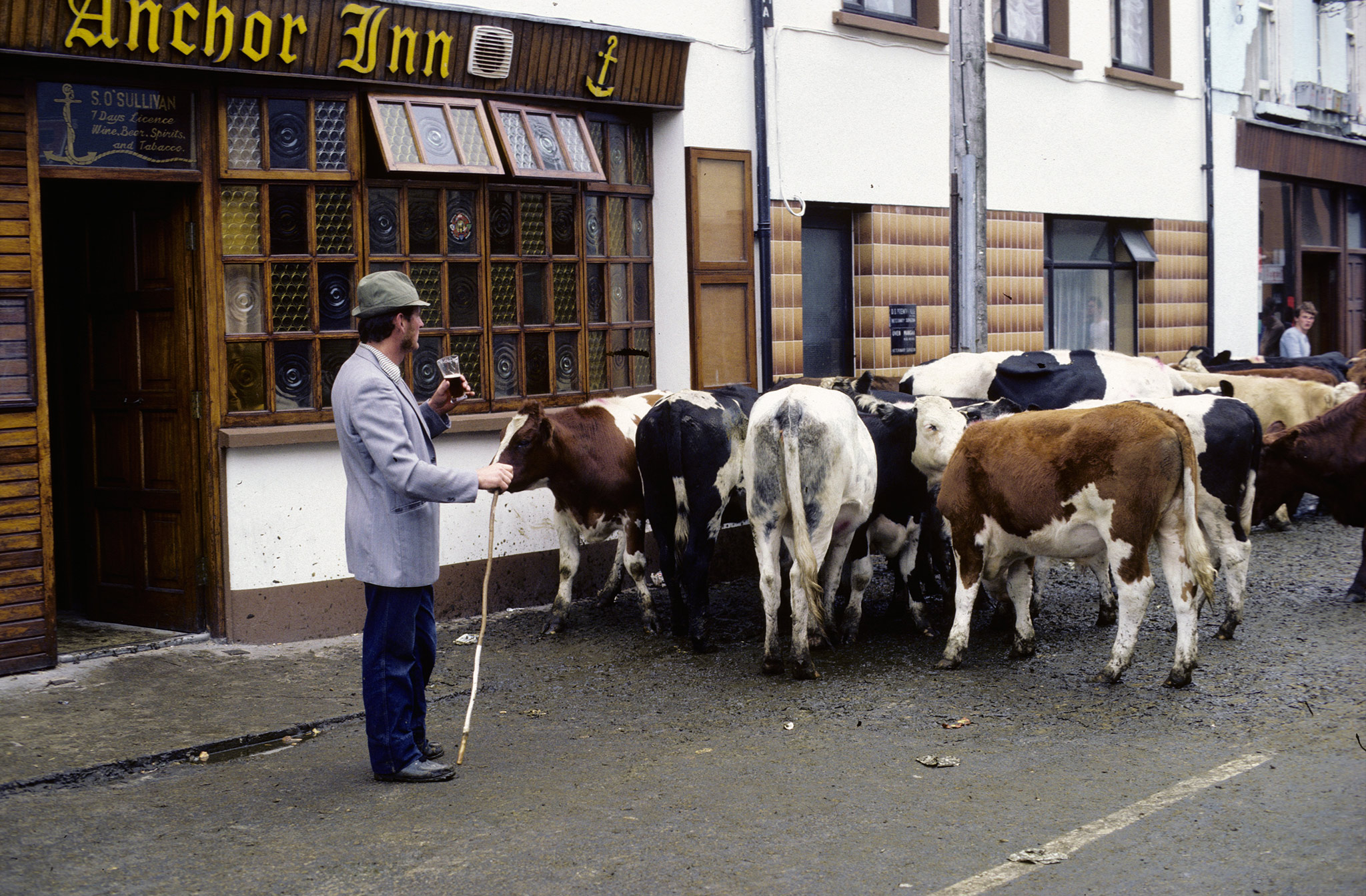 Depuis, chaque année au mois d'août, Killorglin est en fête : fermiers et marchands de bestiaux des environs s'y rendent pendant trois jours pour la Puck Fair (an Puca, bouc en gaélique), qui accompagne la foire aux bestiaux. En effet, un bouc est couronné roi de la fête et hissé sur une estrade d'où, abondamment nourri et abreuvé, il préside pendant les trois jours des festivités.