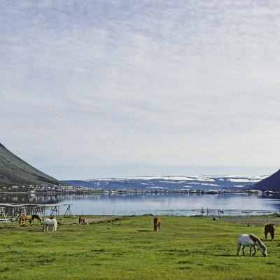 Fjord Skutulsfjordur - Isafjordur