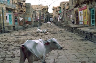 Jaisalmer - Ruelle de la ville basse - Inde 1985