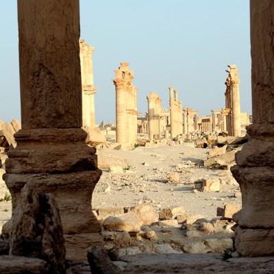 Vue générale de la colonnade de Palmyre