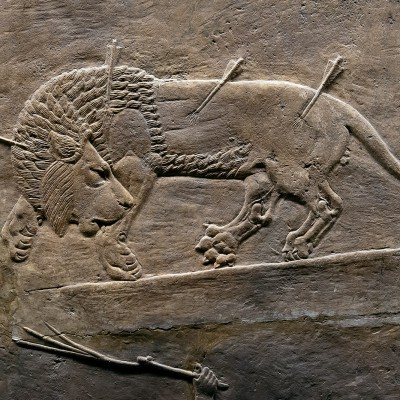 Chasse royal au lion en Assyrie