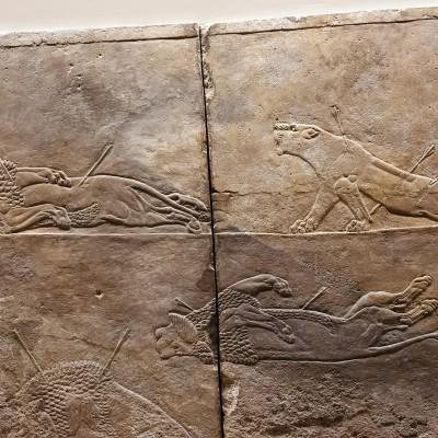 Détail d'un bas-relief montrant une chasse au lion dirigée par le dernier grand roi assyrien, Assurbanipal, trouvé dans les ruines de Ninive, près de l'actuel Mossoul, Irak. Albâtre, vers 645-635 avant JC, British Museum, Londres.