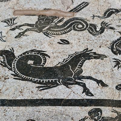 La mosaïque présente le dieu Neptune et son cortège de créatures marines, tout en noir et blanc, en dehors de la forme polychrome du dieu. Neptune est représenté avec un trident, conduisant un char tiré par des hippocampes ; à côté de lui se trouvent des centaures, un bélier, un taureau et d'autres animaux terrestres.
