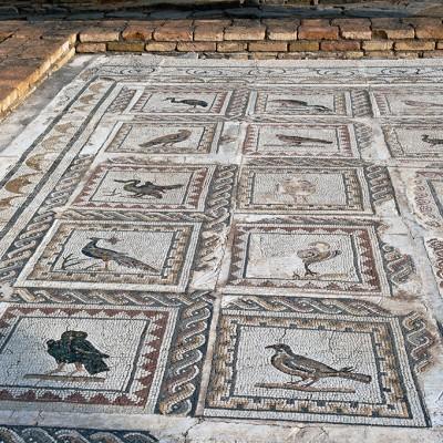 Mosaïque de la Maison des Oiseaux, représentant 33 espèces d'oiseaux différentes. Site d' Itálica près de Séville.