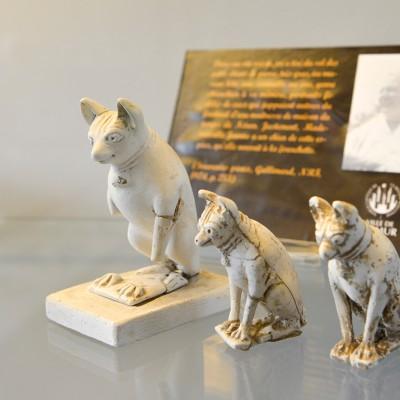 Chiens en terre blanche qui ornaient une tombe d'enfant de l'époque romaine à Rognée.