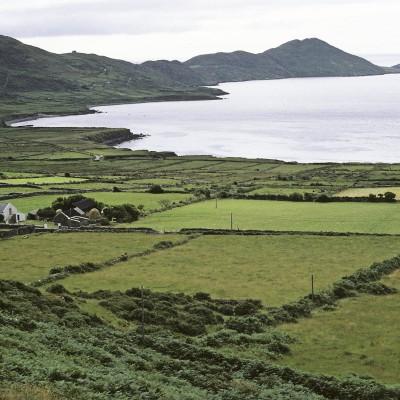 Paysage entre Cahirciveen et Sneem - Anneau du Kerry - Irlande 1984
