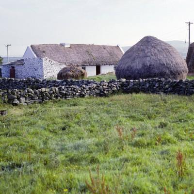 Près des falaises de Cliffs of Mother - Comté de Clare - Irlande 1984
