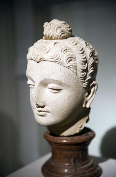 Tête de Bouddha Shakyamuni - Gandhara (aujourd'hui le Pakistan).