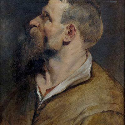 Peter Paul Rubens - Portrait d'homme barbu - Palais Sternberg