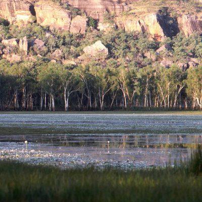 Nourlangie Rock, l'un des hauts lieux de la spiritualité aborigène , et de ses grottes autrefois habitées par les enfants de la Mère Nature.
