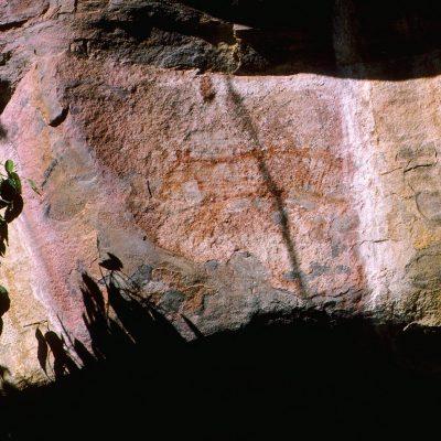 Dessin d'un Thylacine, sorte de loup marsupial zébré disparu depuis plus de 5000 ans, qui permet de penser que cette peinture et les précédentes datent environ de cette période là.