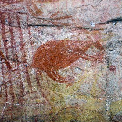 Kangourou - Ubirr Rock est l'un des plus grandes sites sacrés aborigènes.