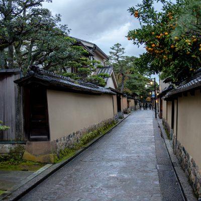 Le quartier des samouraïs, Nagamachi District - Dans cet ancien quartier de samouraïs, certaines résidences de ces vassaux des hautes et moyennes classes se visitent, notamment la villa Nomura, propriété d'un guerrier du XVIesiècle, avec son jardin ornemental.