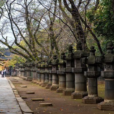 Trônant à l'extrémité d'une haie de lanternes de pierre, le Toshogu, sanctuaire shintô sans prétention installé dans le parc d'Ueno depuis 1627, est spécifiquement dédié au shôgun Ieyasu Tokugawa (1543-1616).