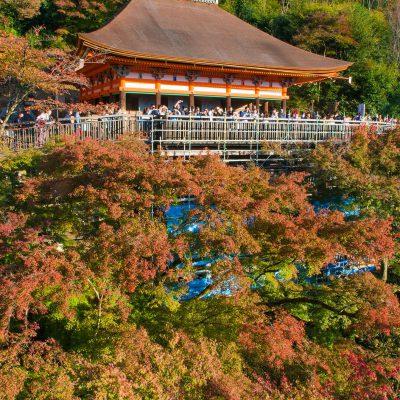 Le temple Kiyomizu-dera - le Hondo - Il tire son nom de la cascade Otowa, située en bas du bâtiment principal du temple, et dont les vertus sont reconnues comme étant bénéfiques pour la santé. Ce nom signifie tout simplement « le temple de l'eau pure ». En 1994, avec plusieurs autres sites au sein de Kyoto, il fut inscrit à la liste du patrimoine mondial de l'UNESCO.