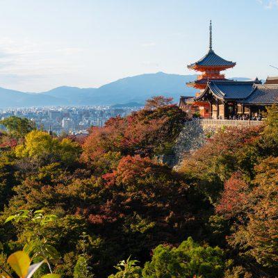 Le temple Kiyomizu-dera. Grâce à sa terrasse en bois de plus de 13 mètre de long, le visiteur a une vue imprenable qui lui permet de surplomber la colline et ses environs.