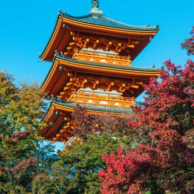 Le temple Kiyomizu-dera – Kyoto