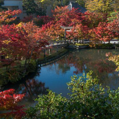 Le jardin et le pont Hojo-ike - temple Eikando Zenrin-ji