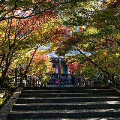 Egalement appelé « Temple aux feuilles d'érables », le Zenrin-ji est niché sur la montagne Higashiyama, à l'Est de l'ancienne capitale.