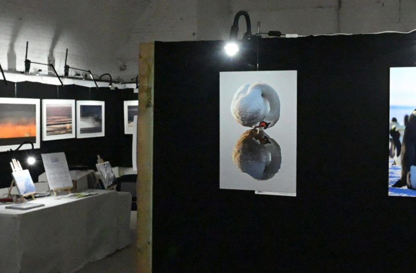 Expositions/Concours