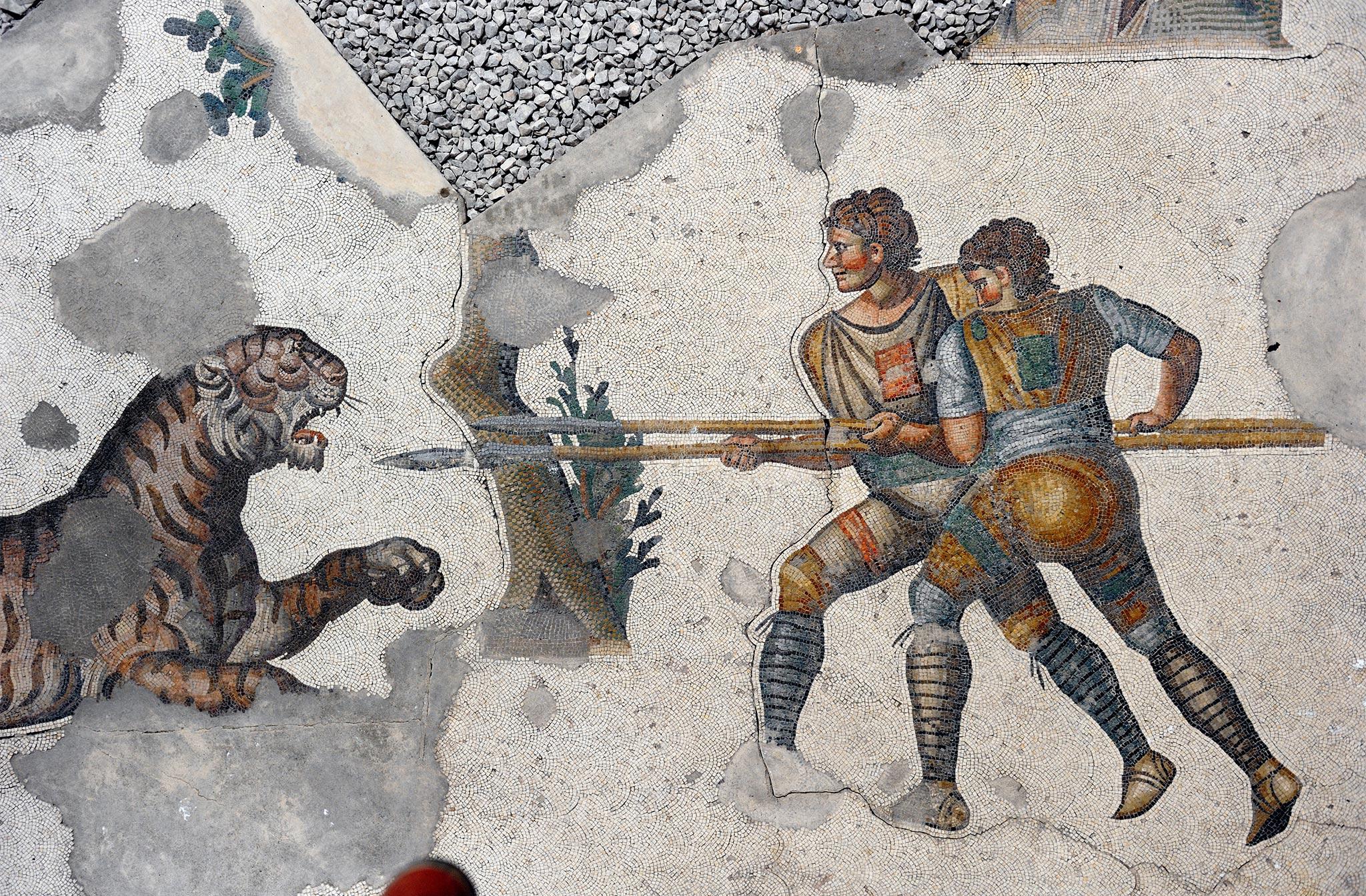Chasse au tigre: Deux chasseurs avec de longues lances se débattent avec un tigre lancé vers eux.  Le Musée de la mosaïque du Grand Palais à Istanbul